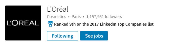 LinkedIn Company Page Overview